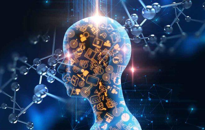 Intelligence artificielle Mettez un tigre dans votre moteur © Telefonica